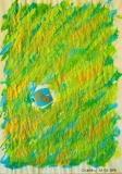 the a ornans, papier pelure A4, 31 08 2016
